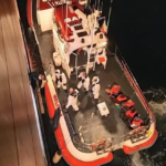 Viehfrachter ist bei Migranten-Seenot nicht standesgemäß