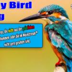 Video-News aus der nicht-grünlinken Ecke ~ #12/2020